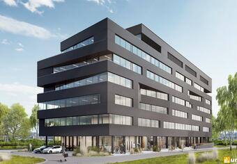 Carbon Office Weglowa 9
